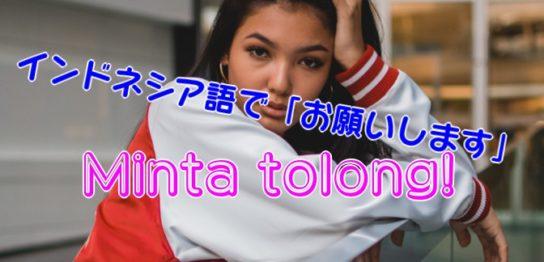 Minta tolong インドネシア語 Yarunesian お願い