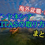 KITAS キタス インドネシア ヤルネシアン 取得方法 ビザ