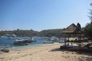 バリ島 ダイビング インドネシア ヤルネシアン